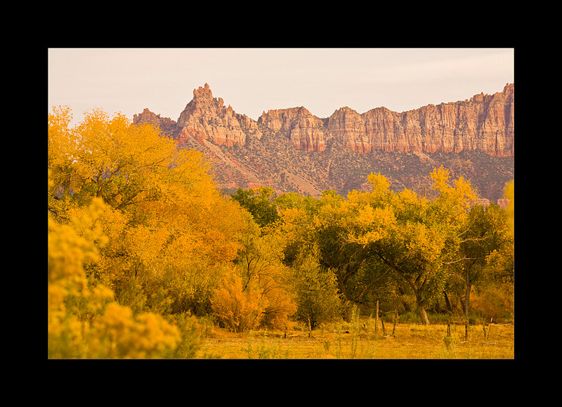 fall colors smugmug.jpg