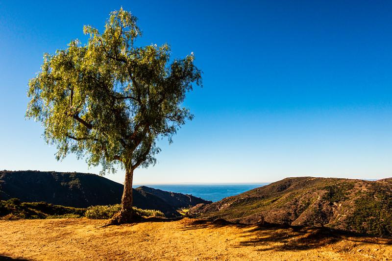 Laguna Niguel, Orange County, California, United States