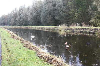 2013-11-03-Drenthe