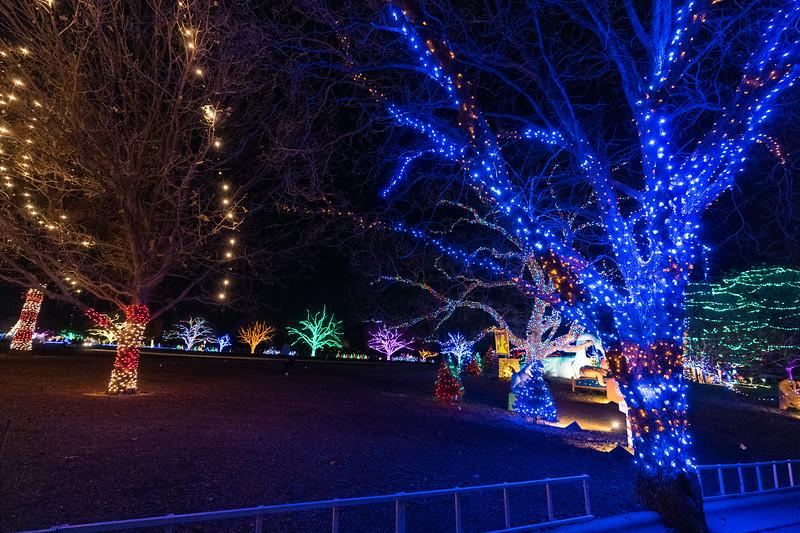 20181215_zilker-trail-of-lights_020.JPG