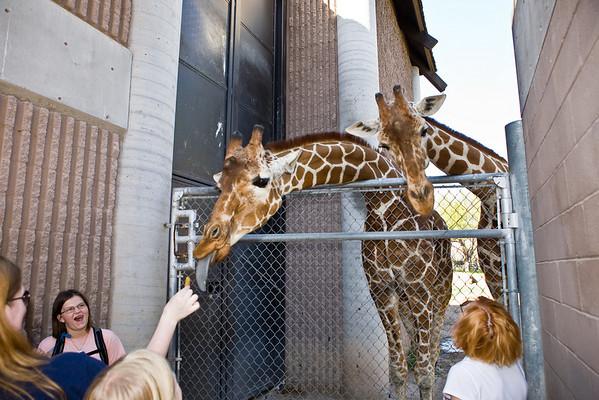 2010 March 14 - Reid Park Zoo