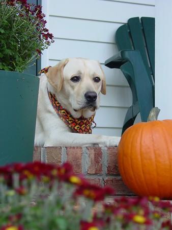 2002-10-31 Halloween