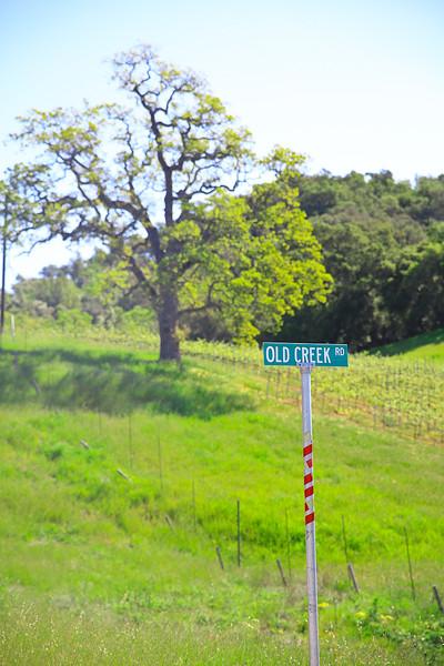 websize_Old Creek Road in Spring-0855.jpg