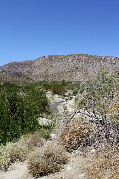 05 Cougar Canyon (62).JPG