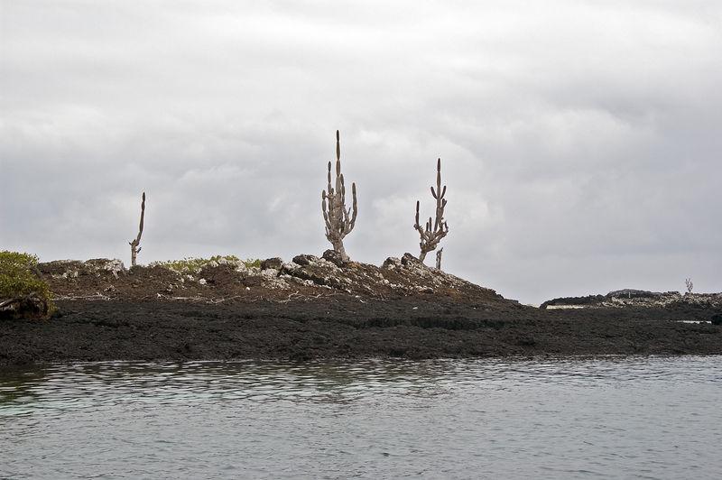 Landscape of islands at Puetro Villamil   (Dec 10, 2005, 02:14pm)