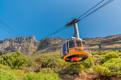 Table Mountain_2616