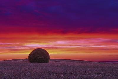 Saskatchewan Landscapes