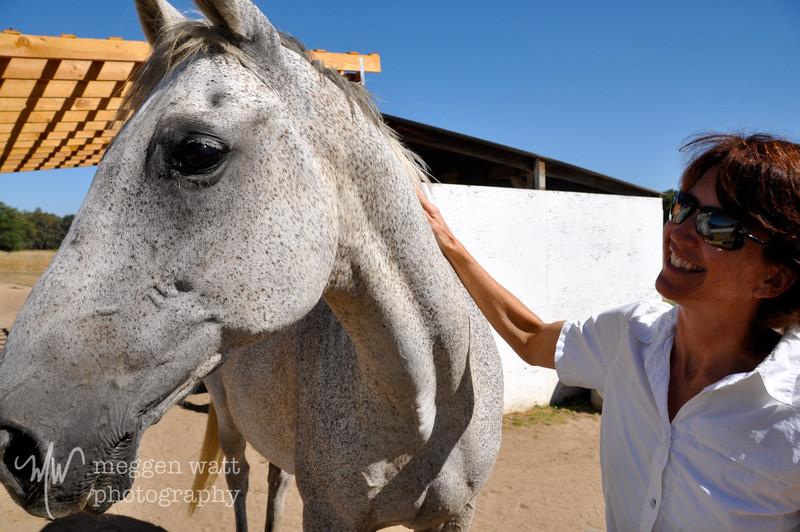 EB&Horses-006.jpg