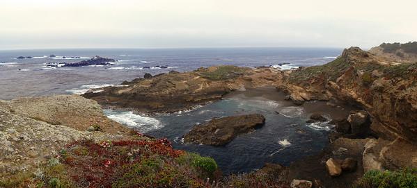 2009-05-02 Point Lobos, Carmel