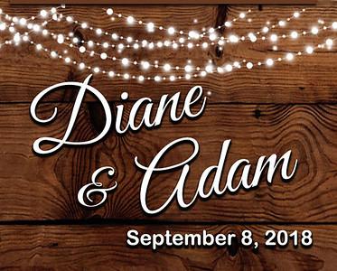 08-09-2018~ Diane and Adam Wedding