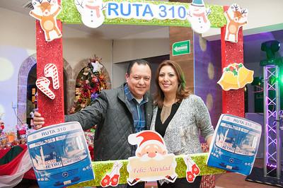 Ruta310
