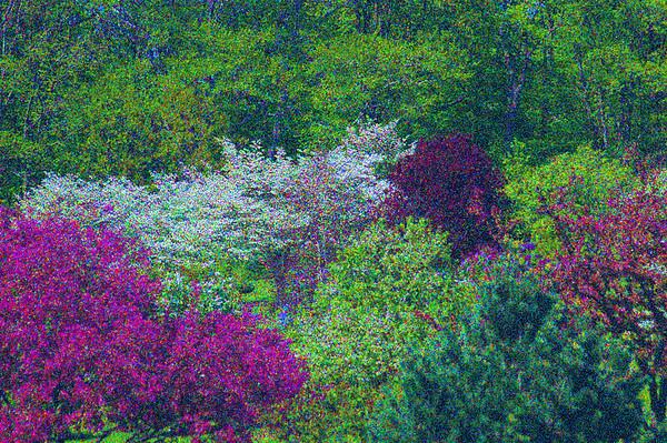 Dawes Arboretum, Ohio