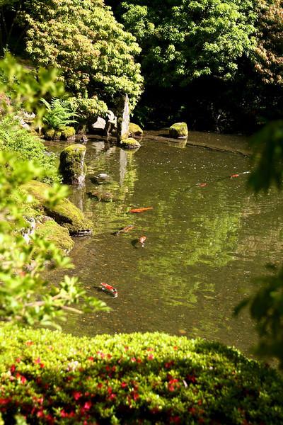 Portland Japanese Garden 6-3-11  1796.jpg