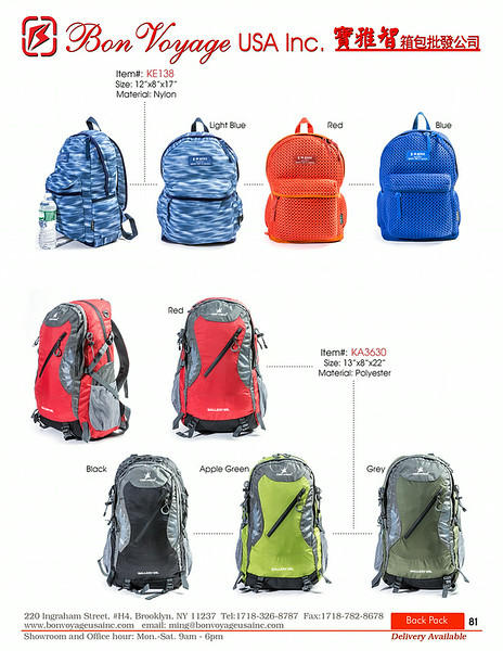 BackPack p81-X2.jpg