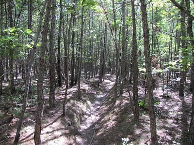 2012 Scrub Pine Enduro