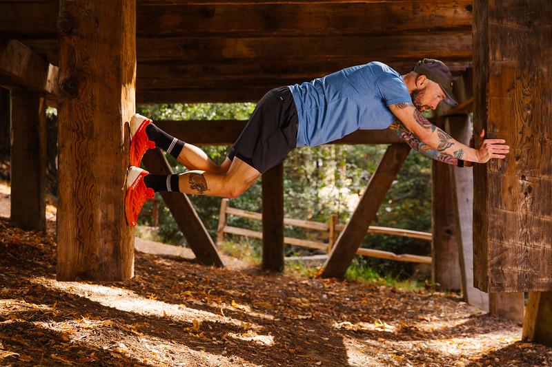 DT_redwoods_Jussioksanen_edited-2382.jpg