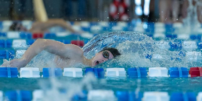 2018_KSMetz_Feb17_SHS Swimming_ State Finals_NIKON D5_5597.jpg