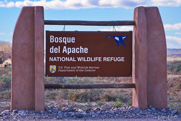 Bosque del Apache National Wildlife Refuge