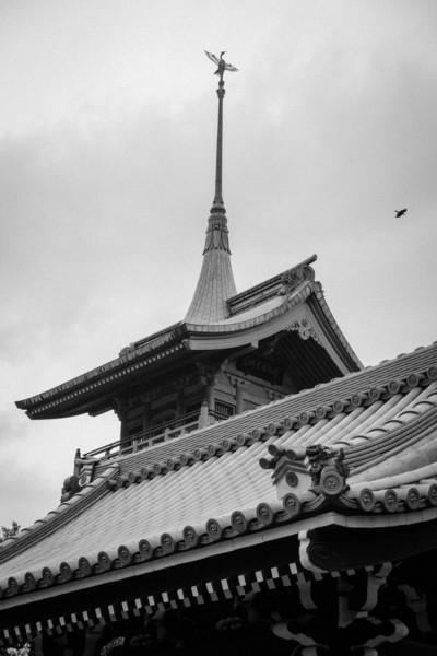 Kyoto Day 8 (157 of 176).jpg