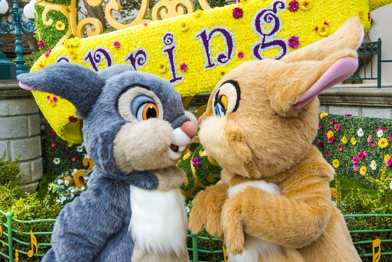 SWING INTO SPRING at Disneyland Paris with entertainment, greets, and more