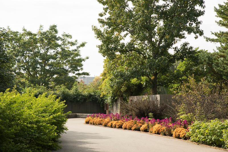 Chicago Botanic Garden 018.jpg