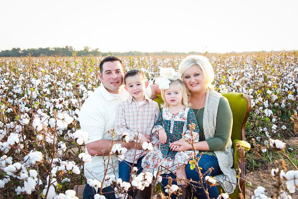 Pellegrin - Cotton Field - 10.2016