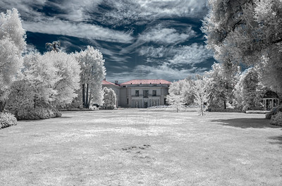 Infrared at The Huntington
