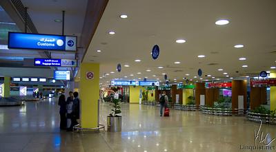 2010-11-20 Michelin Dubai