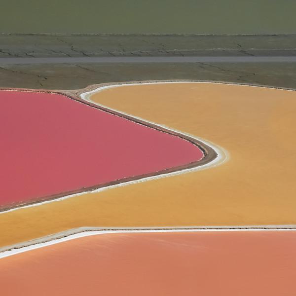 Salt Pond #1