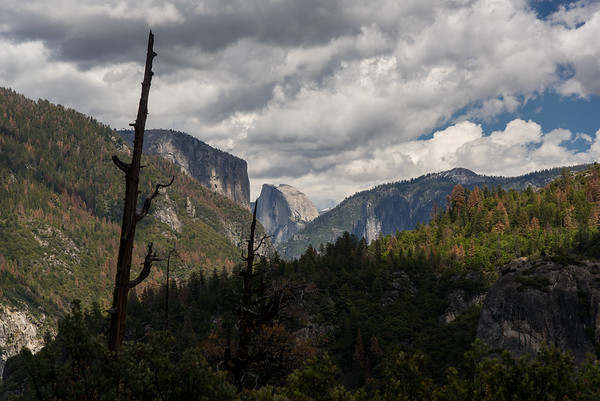 Yosemite 2016 - Landscapes