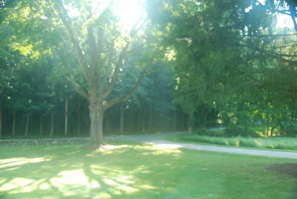 Taken on September 5th, 2008