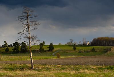 Braeside farmland.
