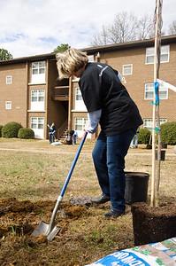 20130208 Tree Charlotte - Little Rock Apartments-38