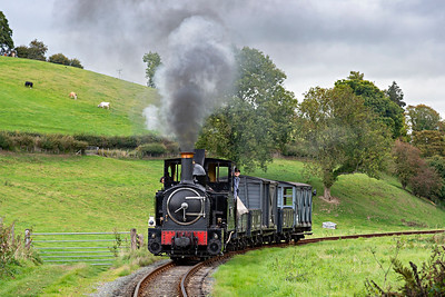 The Earl #822 brings a Llanfair bound freight into Heniarth Station 3