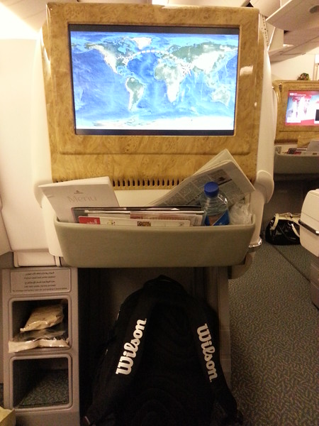 Emirates Business Class (4)