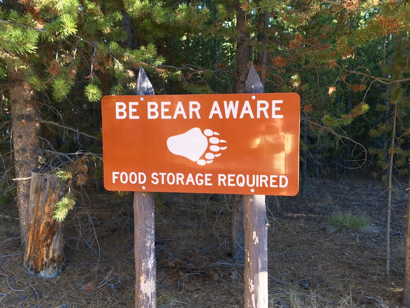 Be bear aware!