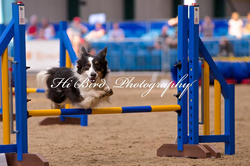 small jump class 1061.jpg