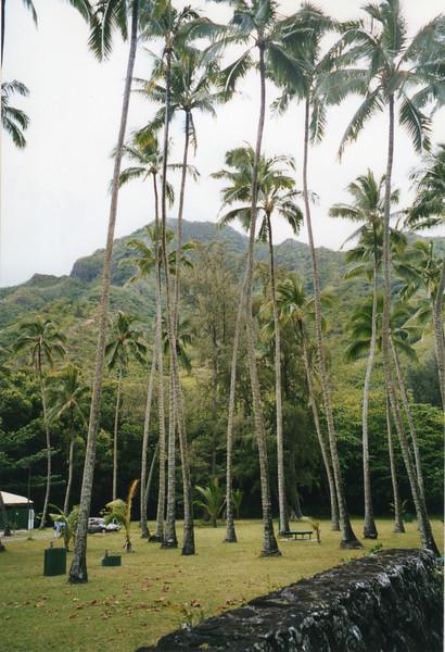 199806-hawaii-11269.jpg