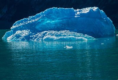Alaska Cruise 29 May - 5June 2015