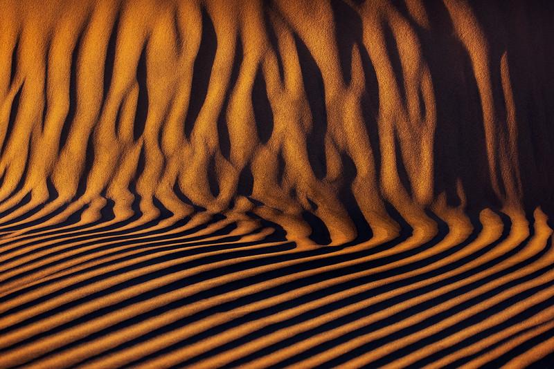 Abstract copy.jpg