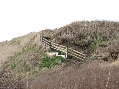 2011_02_13 - Ebey's Landing