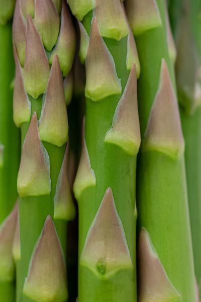 Asparagus 5.jpg