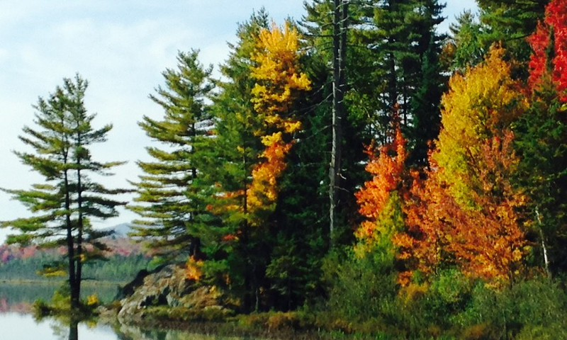 Gold and orange trees interspersed with green evergreens at Rainbow Lake on a motorcycle leaf peeping trip.