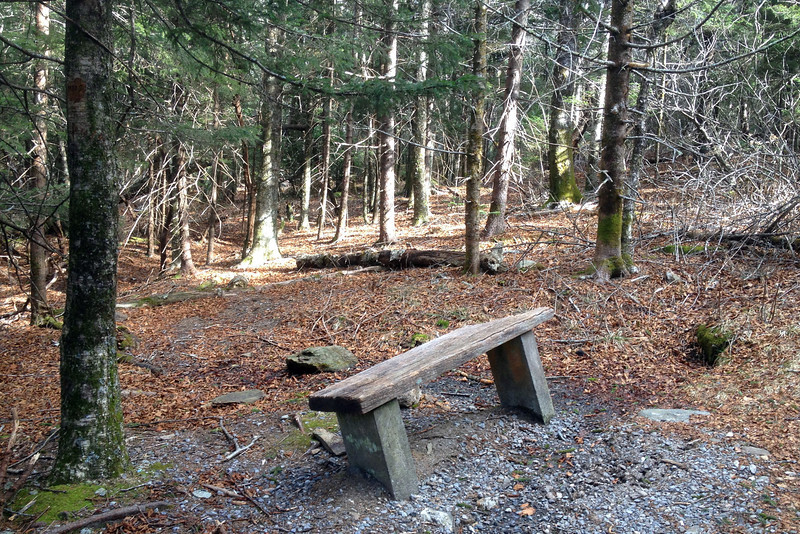 Devil's Courthouse Trail -- 5,600'