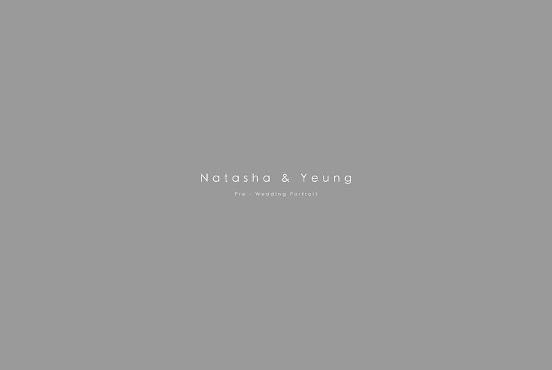 natasha_upgrade_B2_00.jpg