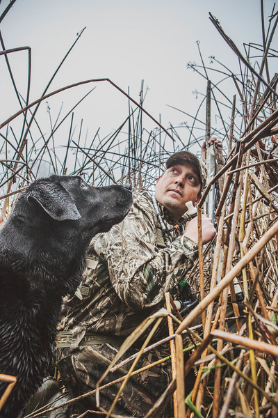 Jake Messerli and Lucy hunting a foggy morning at Bird Haven Ranch, California.