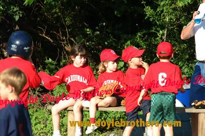 Braintree Little League Games