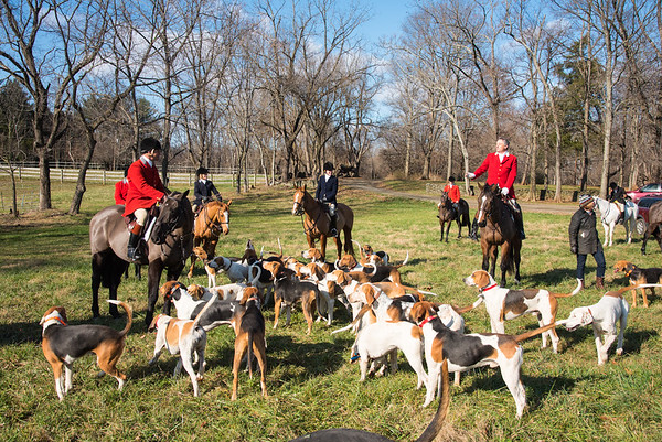 DRHC Warrenton Hunt 12-19-2015