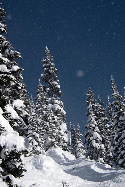 whistler snow scene.jpg
