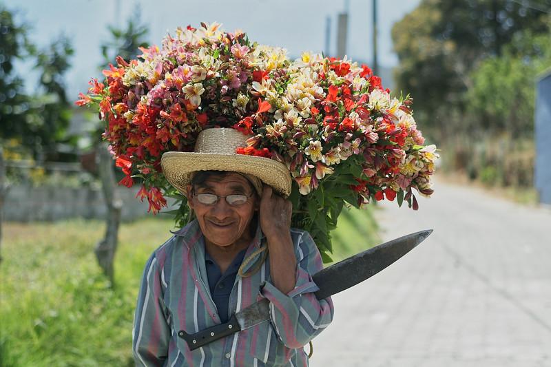 Flower Man.jpeg